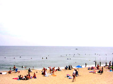 Hudgins Real Estate Virginia Beach Resort Property  Oceanfront